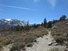 Mt Morgan and Hilton Creek Trail