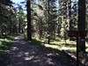 Mono Pass Trailhead