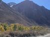 Fall Colors - McGee Creek Road