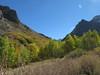 McGee Creek Fall Colors
