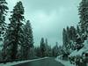 Drive to Lakes Basin  (car window makes photo darker)