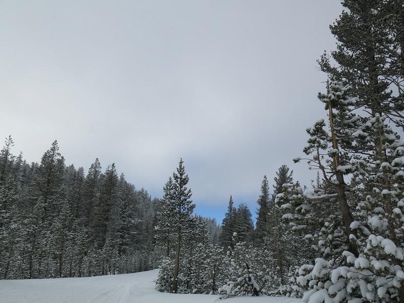 Nov 26, 2015   Snowshoe to Minaret Vista and back