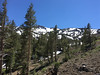 South side of Sonora Pass