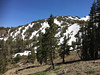 South of Sonora Pass