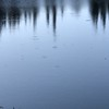 2017-08-10  Skelton Lake.  There's fish in there