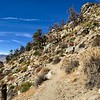 2017-11-06  Nice class 1 trail for 4 miles, then a sandy steep slope for last 1/2 mile