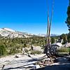 Near Vogelsang High Sierra Camp