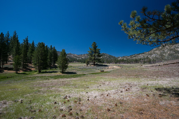california; dome land wilderness; sierra national forest; sierra nevada About 2 miles from Little Manter Meadow, where we slept, Manter Meadow is truly grand.