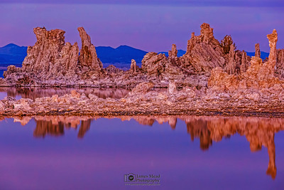 """Heliotrope,"" Mono Lake Tufas at Dusk, Mono Lake, Sierra Nevada Mountains, California"