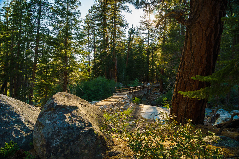 Mono Creek Footbridge