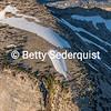 Rugged Cliff, Desolation Wilderness