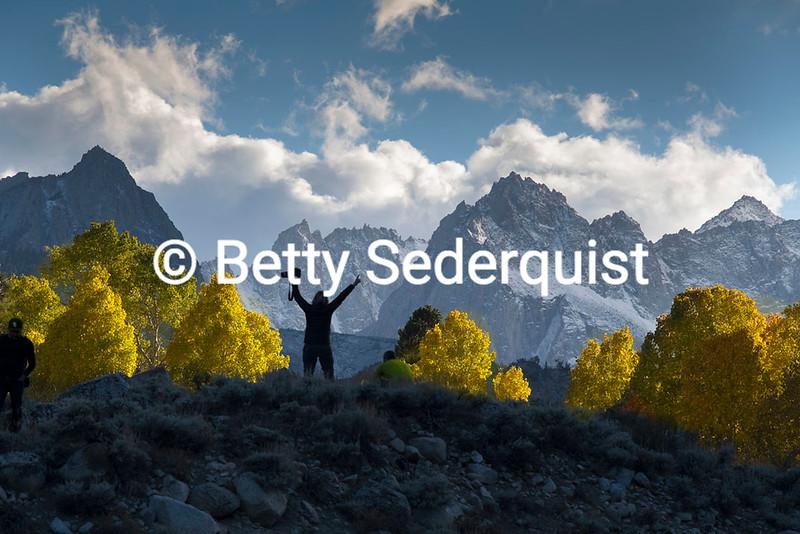 Fall Colors and Sierra Peaks, Bishop Creek