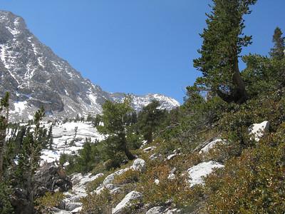 Lone Pine Peak via the SW chute, M Provisional