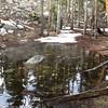 Pond partially frozen