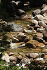 Silliman Creek