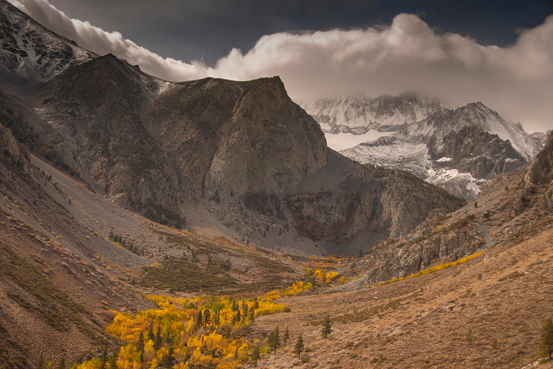 Fall colors near the trailhead North Fork of Big Pine. Beyond, fresh snow on the Palisades.