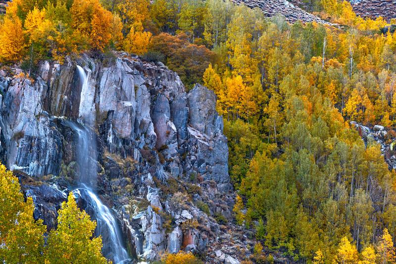 Waterfall & Fall Foliage - Southfork - Bishop