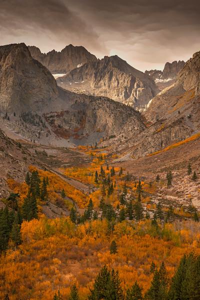 Fall Color along the Northfork of Big Pine