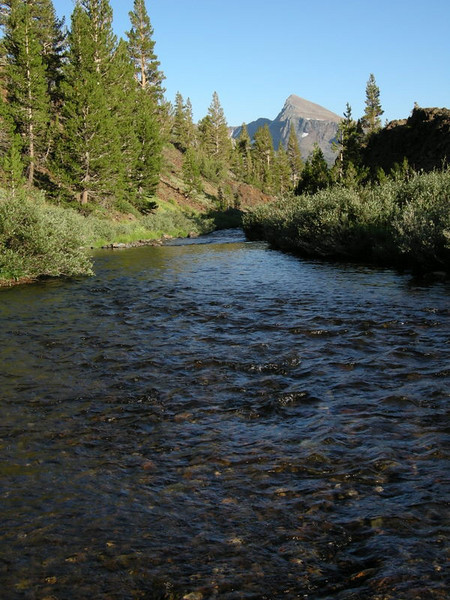 Lee Vining Creek and Mt Dana<br /> <br /> Below camp at Sawmill