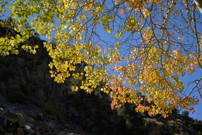 Fall colors at North Lake
