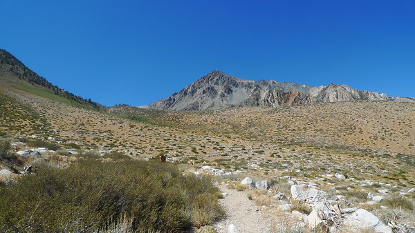 The route is an easy to follow old mind road that has deteriorated to single track trail in most places.