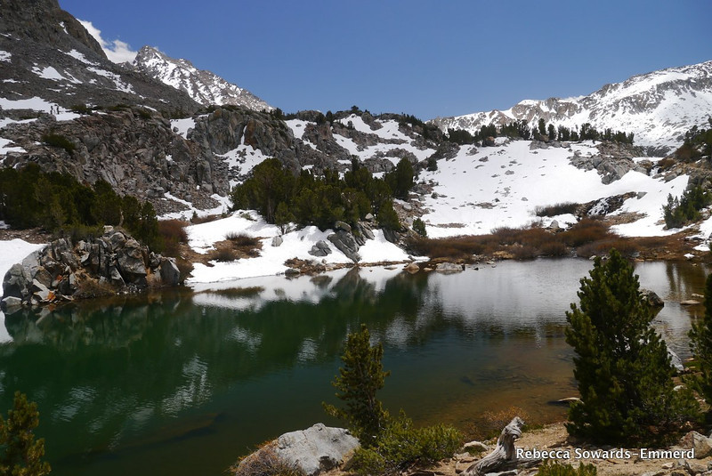 Timberline Tarn