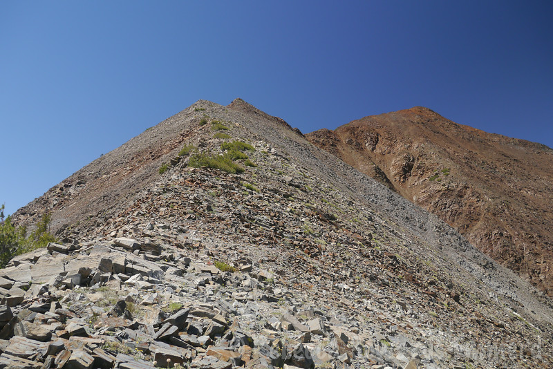 Another look at the ridge. There was a use trail most of the way.