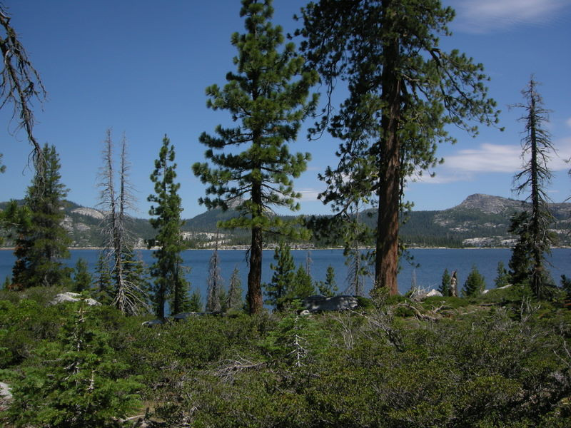 The trail starts near and parallels Loon Lake for a couple of miles.