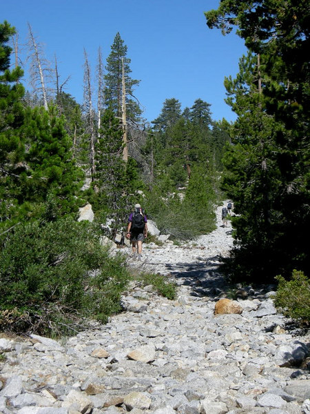 Hiking out along Road Ankle Twist