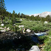 Stream crossing at the Bench Lake/JMT Junction