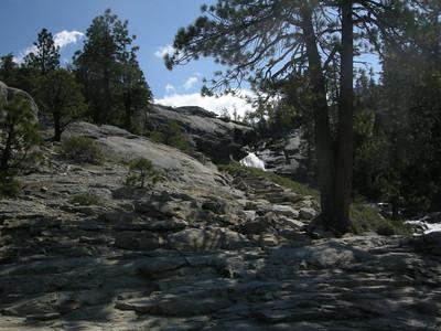 Trail steps along the creek