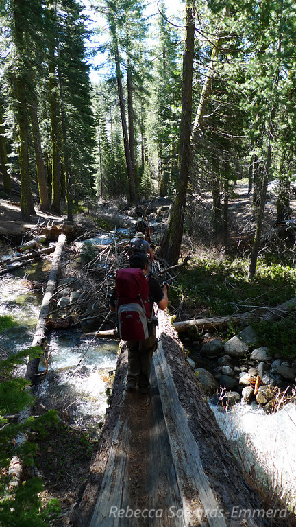 Creek crossing - this is a 'small' feeder creek. Needed to cross on a log or get wet to knees.