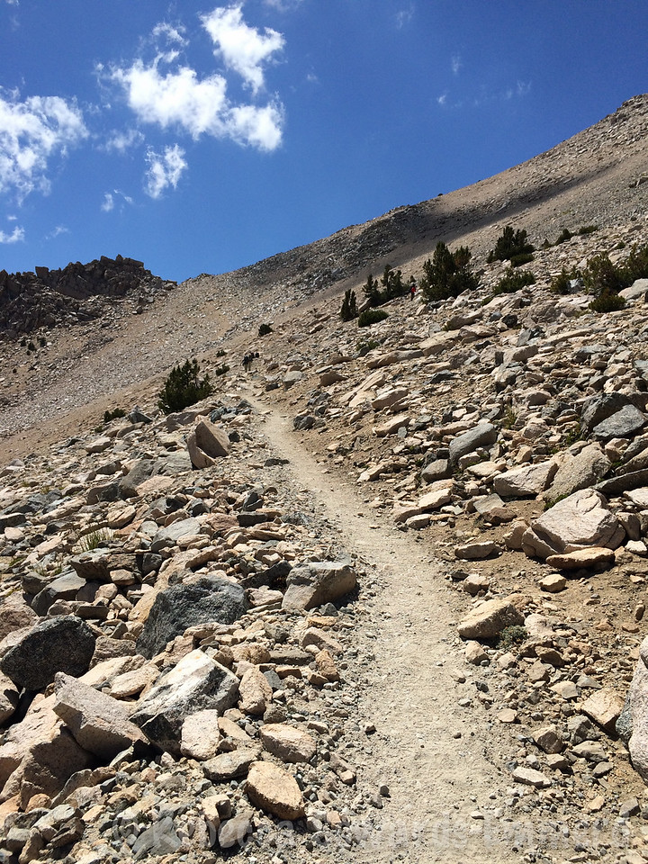 The last sloggy switchbacks to the pass. It's a great hike, but this last bit is annoying.