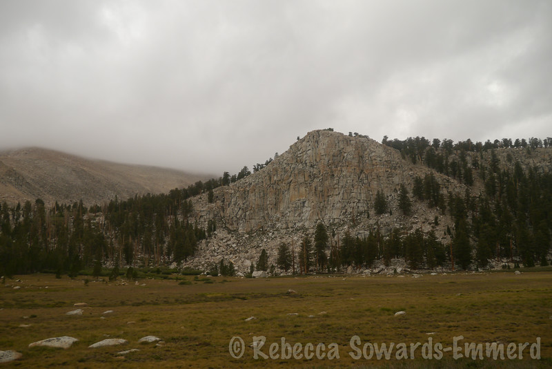 Meadows along the South Fork. And still cloudy. Sigh.