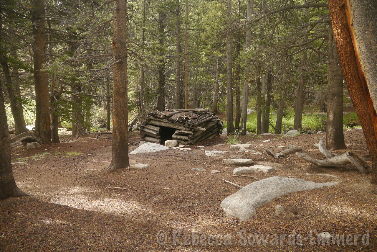 I turned off on an unofficial old trail up the South Fork of Cottonwood Creek. It's a shortcut to New Army. It goes past this old (presumably) sheepherder cabin.