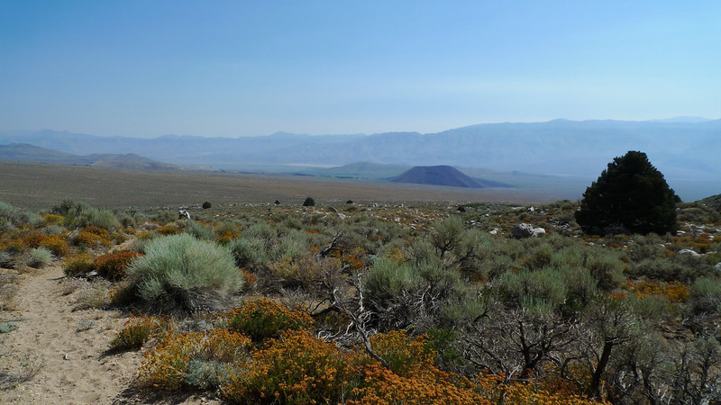 Some volcanic cinder cones dominate the desert landscape down here