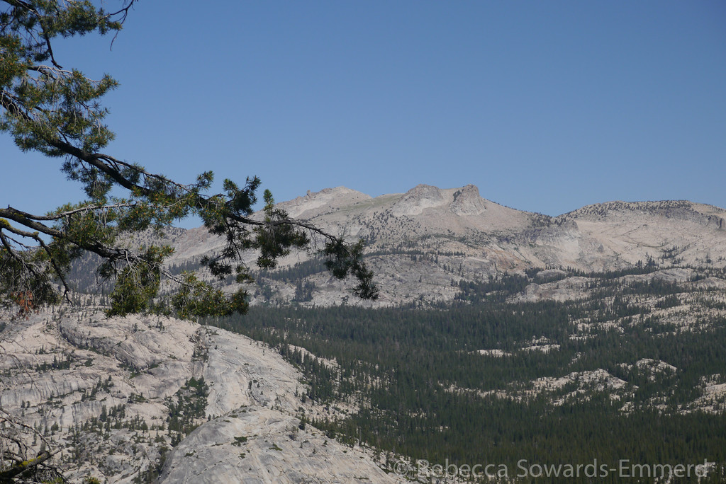 Looking across at Hoffmann, another Yosemite classic I want to do again.