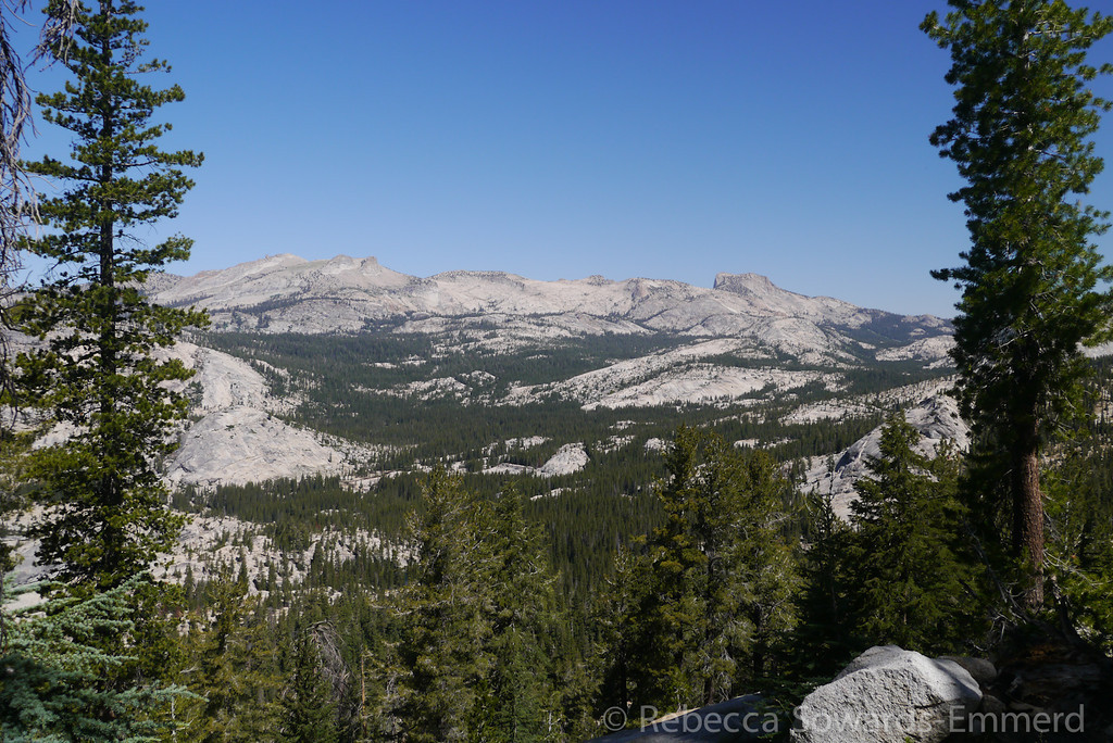 Hoffmann and Tuolumne Peak ridge.