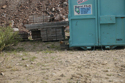 Our first of many marmot sightings, this one appeared to live among the Saddlebag Dam renovation construction equipment.