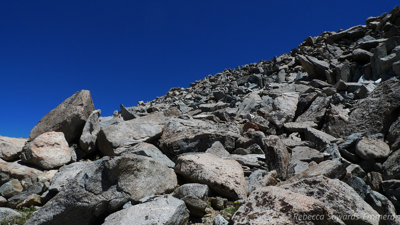 Looking back up. Almost out of boulders and back to sandy/dirt terrain.