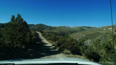 We're at about 9000 ft and the higher sierra peaks are starting to appear.