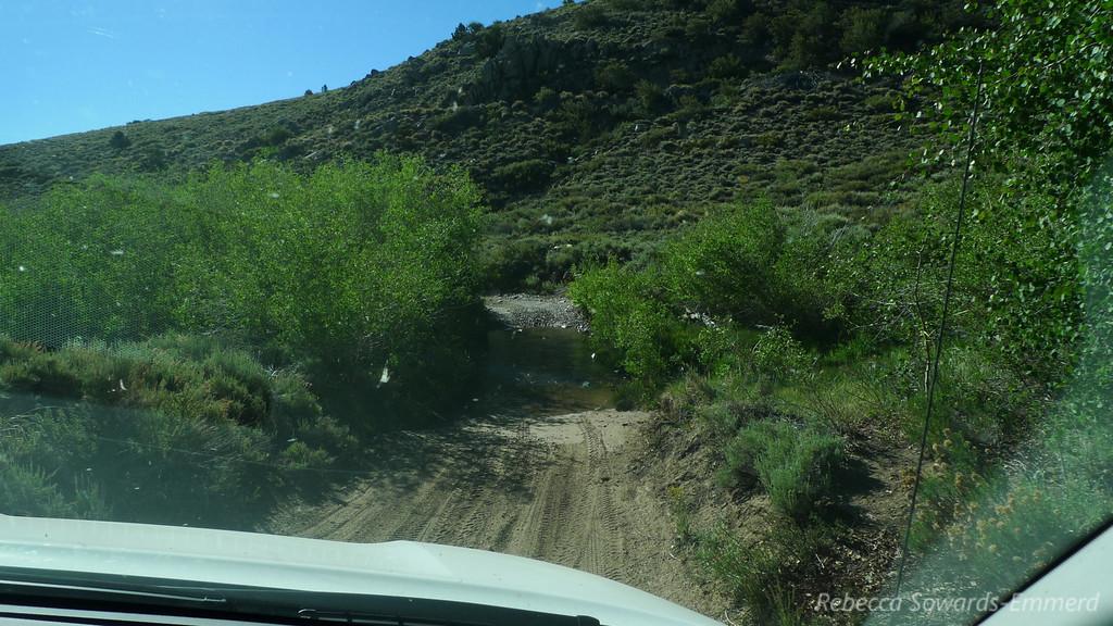 Creek crossing.
