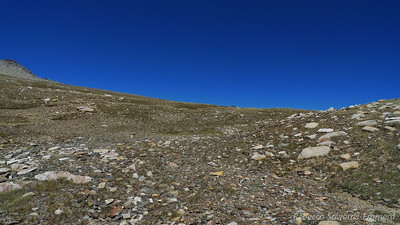 Reaching the broad plateau.