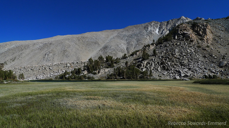 Finally, I'm off the plateau and down in the Baker Creek drainage again. Normally I wouldn't linger in a spot like this due to mosquitoes but the wind and dry conditions make it beautiful.