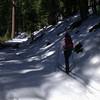 Crane flat skiing