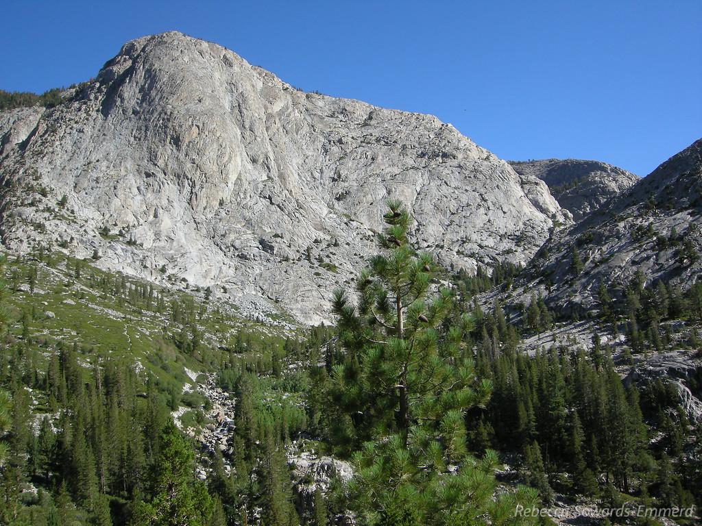 View up Piute Canyon