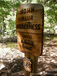 At the other side of the John Muir Wilderness (this one with a nice wooden sign)