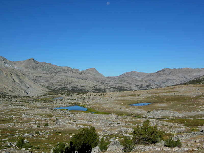 Small lakes in Humphreys Basin reflect the clear blue sky