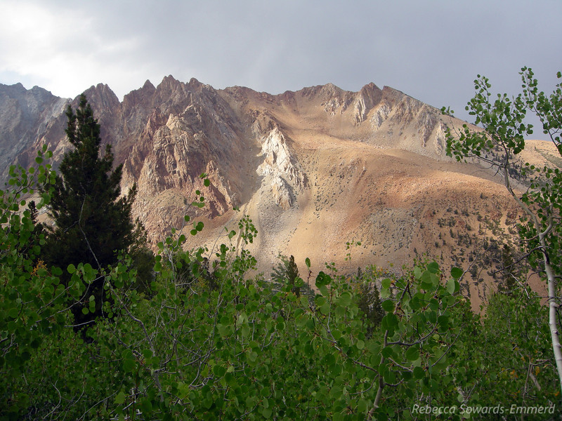 As we climb through the aspens we get views across towards Piute Crags