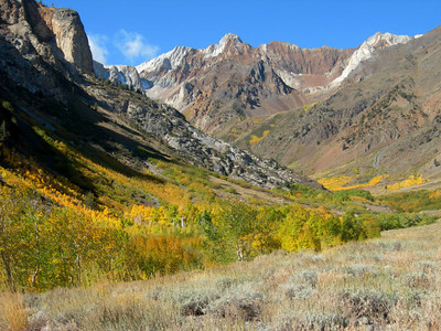 Yellow aspens and Mt Baldwin - Sunday Morning